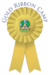 Gold Ribbon Camp Logo